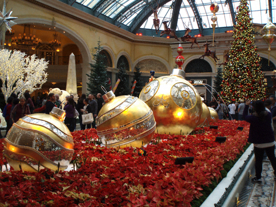Spectacular Christmas Decorations | Bellagio Conservatory