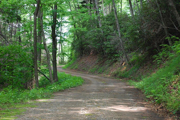 National park to close balsam mountain road for maintenance for Balsam mountain