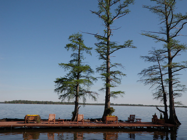 Reelfoot Lake, Tennessee's Only Natural Lake | Tennessee Lakes