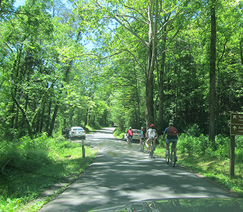 cades cove vehicle free days